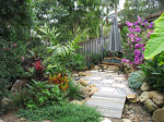 Small Tropical Garden After