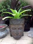 Aztec Pot Head